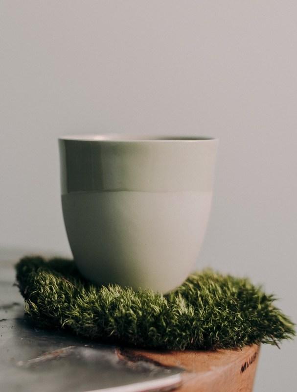 Чашка Ment Kaffekopp Kål. Изображение 1