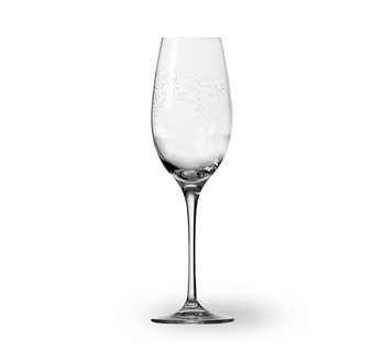 Бокал для шампанского Wik & Walsoe Dugg
